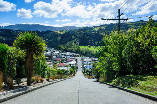 Steep「Baldwin Street, the world's steepest residential street, Dunedin, South Island, New Zealand」:スマホ壁紙(11)