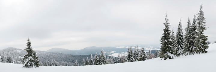 エクストリームスポーツ「Carpathians ます。山雪 cowered 、」:スマホ壁紙(4)