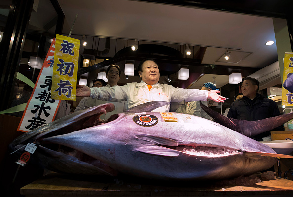 Fish「Tsukiji Fish Market Holds First Auction For 2017」:写真・画像(9)[壁紙.com]