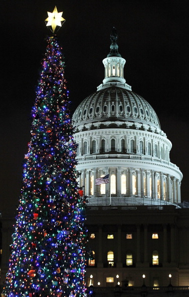 Stanislaus National Forest「Lawmakers Attend Capitol Christmas Tree Lighting Ceremony」:写真・画像(7)[壁紙.com]