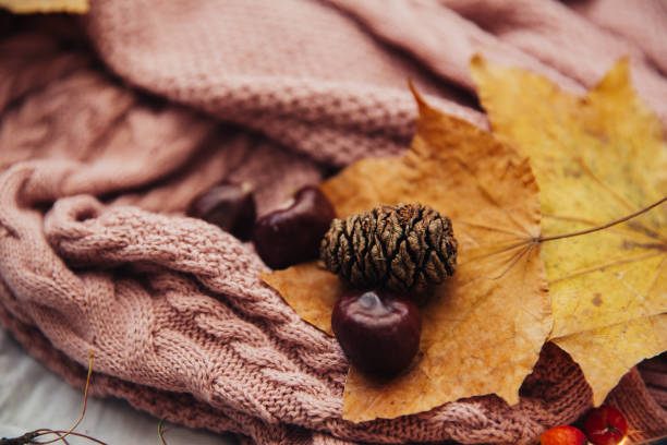 Knitted scarf and autumn decorations:スマホ壁紙(壁紙.com)