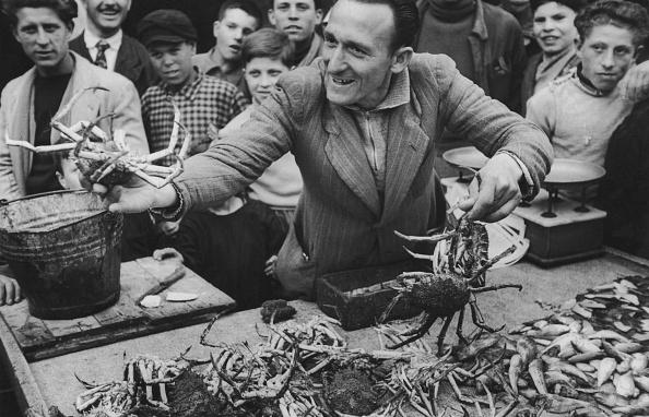 Market Stall「Live Crabs For Sale」:写真・画像(1)[壁紙.com]