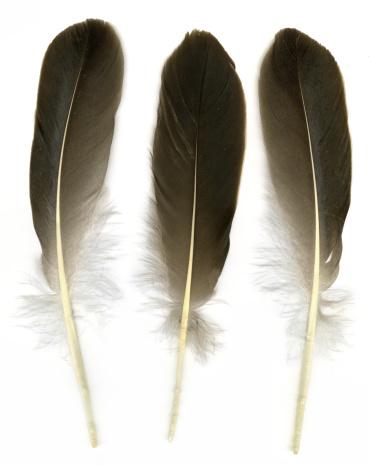 魔術師「Three feathers」:スマホ壁紙(18)