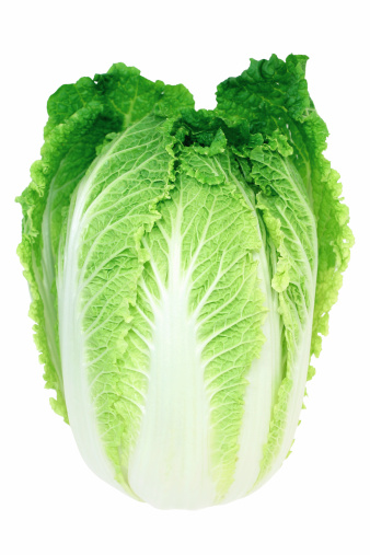 Chinese Cabbage「cabbage」:スマホ壁紙(0)