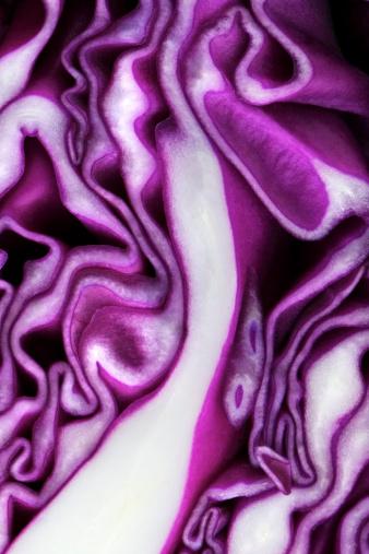Red Cabbage「Cabbage」:スマホ壁紙(7)