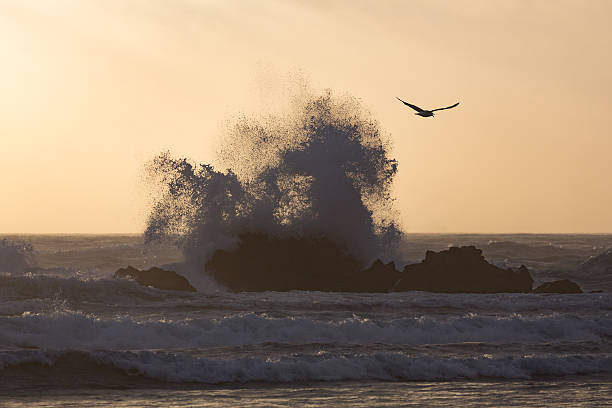 Wave at Cannon Beach:スマホ壁紙(壁紙.com)
