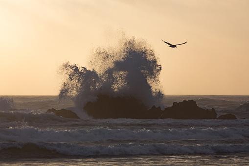 Cannon Beach「Wave at Cannon Beach」:スマホ壁紙(2)