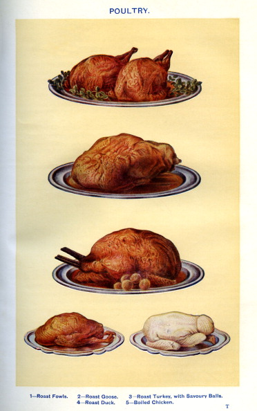 Mrs Beeton「Mrs Beeton 's cookery book - poultry」:写真・画像(9)[壁紙.com]