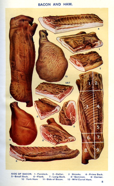 Mrs Beeton「Mrs Beeton 's cookery book - bacon and ham」:写真・画像(18)[壁紙.com]