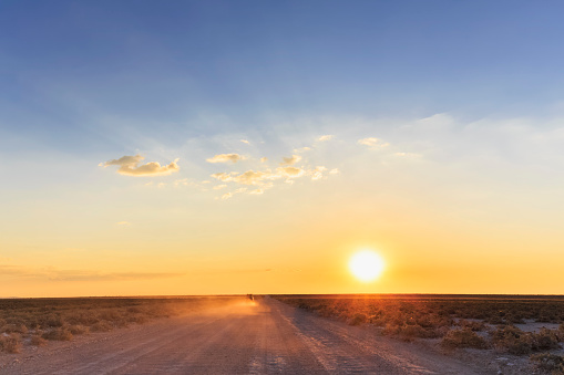 Dust「Namibia, Etosha National Park, off-road vehicle driving on gravel road by sunset」:スマホ壁紙(13)