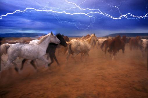 雷「Horse stampede」:スマホ壁紙(8)
