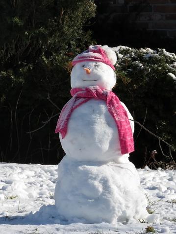 雪だるま「Chillin in the Winter」:スマホ壁紙(8)