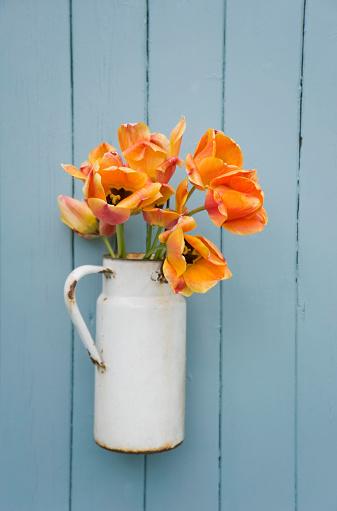 チューリップ「Old milk can with orange tulips in front of wooden wall」:スマホ壁紙(19)