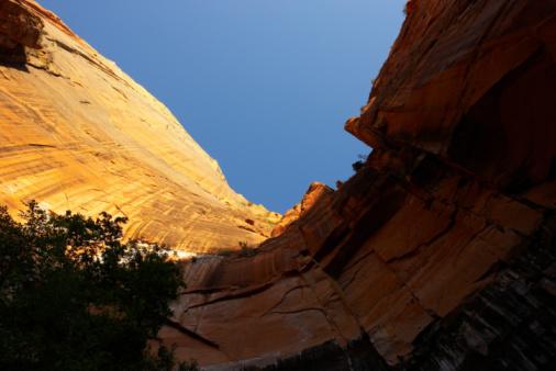 Steep「Zion National Park」:スマホ壁紙(10)