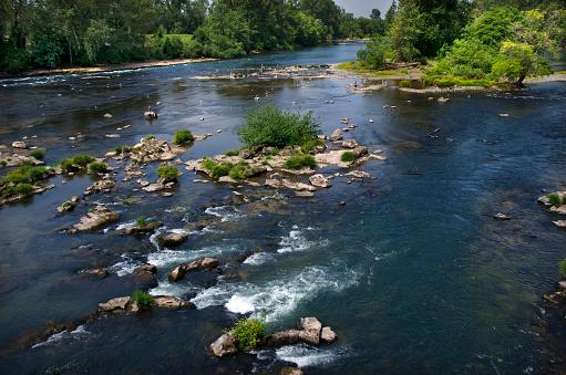 ウィラメット国有林「Wilamette River in Eugene, Oregon」:スマホ壁紙(14)