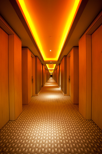 Long「Long, narrow corridor with retro themed carpet and lighting」:スマホ壁紙(18)