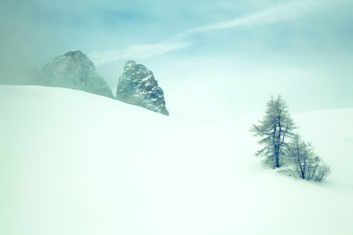 Austria「Snow」:スマホ壁紙(1)
