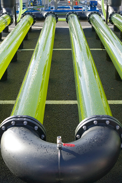 Algae「An AlgaeLink Algae growing system that is harvested to make ethanol and biodiesel. Producing oil from algae in this way is much more efficient than from growing traditional plant oil crops like oil seed rape. It also has the benefit that it does not take」:写真・画像(3)[壁紙.com]