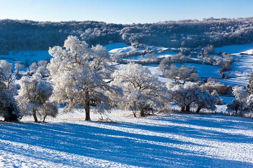 コッツウォルズ「Early winter snow on the Cotswold scarp at Edge, Gloucestershire UK」:スマホ壁紙(13)