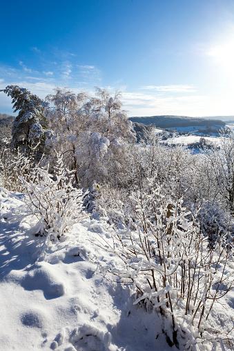 コッツウォルズ「Early winter snow beside the Cotswold Way National Trail at Haresfield Beacon, Gloucestershire UK」:スマホ壁紙(14)