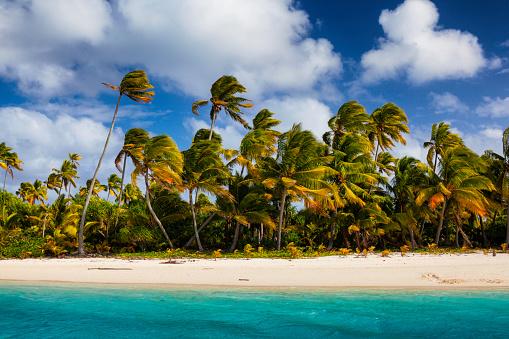 South Pacific Ocean「Tropical Aitutaki Lagoon In The Cook Islands」:スマホ壁紙(12)