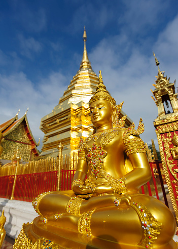 Chiang Mai Province「Thailand, Chiang Mai, temple Wat Phra That Doi Suthep, ornate golden statue and chedi」:スマホ壁紙(15)