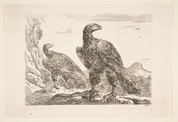 Beak「Two Eagles」:写真・画像(3)[壁紙.com]