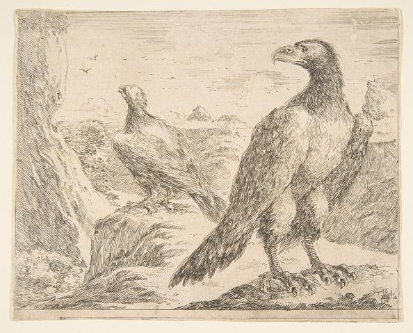 Beak「Two Eagles」:写真・画像(9)[壁紙.com]