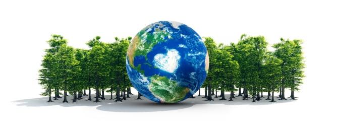 Lumber Industry「Earth In Healthy Forest」:スマホ壁紙(9)