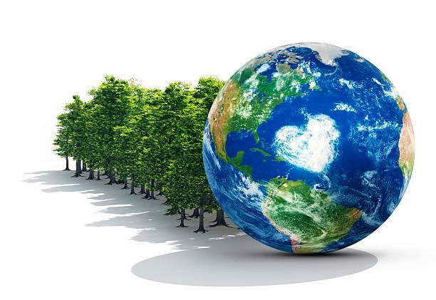Earth In Healthy Forest:スマホ壁紙(壁紙.com)