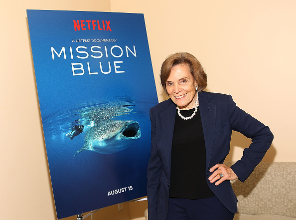 """Screening「Dr. Sylvia Earle And Netflix Present A Special Preview Screening Of """"Mission Blue""""」:写真・画像(19)[壁紙.com]"""