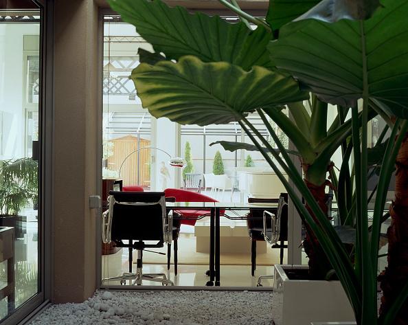 葉・植物「View of a home office through leaves」:写真・画像(9)[壁紙.com]