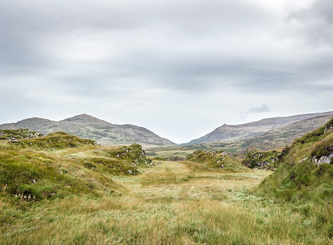 National Park「Killarney National Park, Ireland」:スマホ壁紙(13)