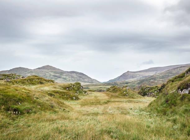 Killarney National Park, Ireland:スマホ壁紙(壁紙.com)