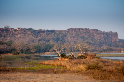 Rajasthan「Padam Lake and Mosque, Ranthambhore, India」:スマホ壁紙(11)