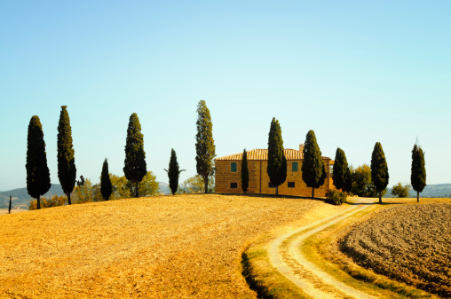 Footpath「Farmhouse and Cypress Trees」:スマホ壁紙(1)