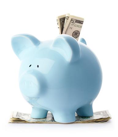 Stuffed「Blue piggy bank with dollar bills」:スマホ壁紙(0)