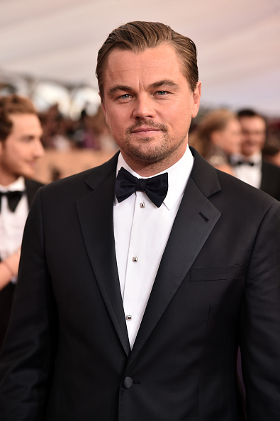 Leonardo DiCaprio「22nd Annual Screen Actors Guild Awards - Red Carpet」:写真・画像(12)[壁紙.com]