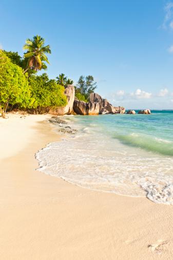 Frond「Surf lapping idyllic tropical island beach palm trees lagoon Seychelles」:スマホ壁紙(5)
