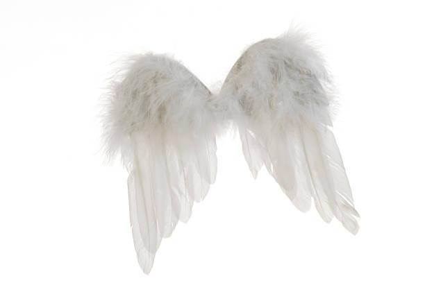 Angel wings:スマホ壁紙(壁紙.com)