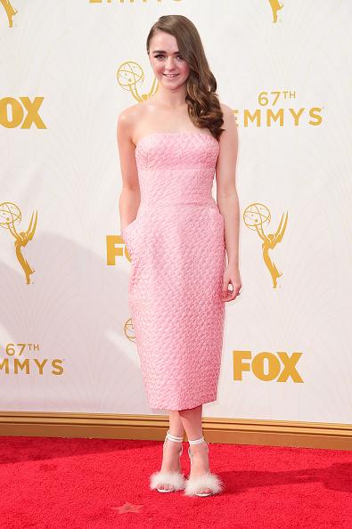 Emmy award「67th Annual Primetime Emmy Awards - Arrivals」:写真・画像(19)[壁紙.com]
