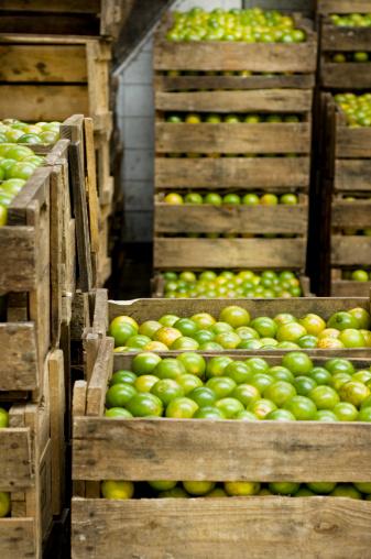 Market Stall「limes」:スマホ壁紙(10)