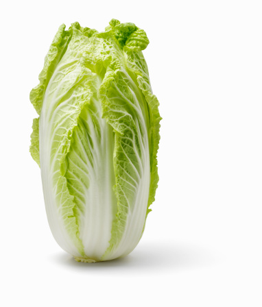Chinese Cabbage「Chinese cabbage on white background」:スマホ壁紙(6)