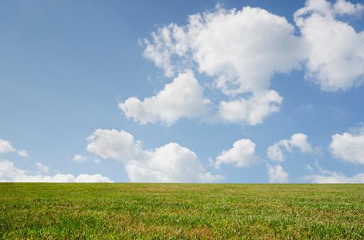 cloud「Sky above grassy field」:スマホ壁紙(5)