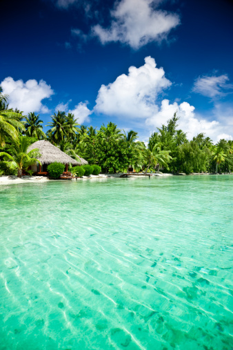 Aitutaki Lagoon「Exotic Luxury Tourist Resort」:スマホ壁紙(2)