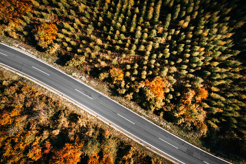 Hairpin Curve「Austria, Lower Austria, Vienna Woods, Exelberg, aerial view on a sunny autumn day over a winding mountainroad」:スマホ壁紙(1)