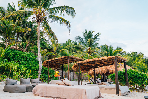 Thatched Roof「Boutique Hotel on Beach in Tropical Paradise」:スマホ壁紙(8)