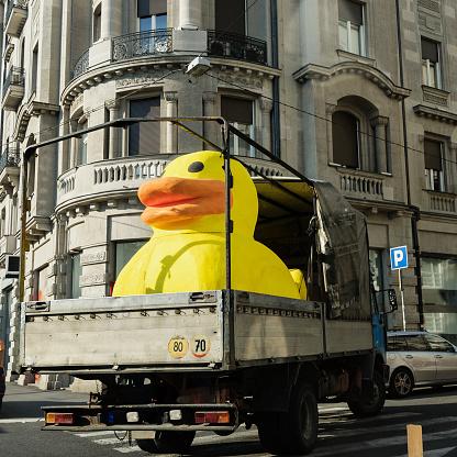 おもちゃのアヒル「Duck」:スマホ壁紙(0)