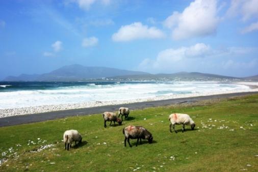 アキル島「Keel, Achill Island, County Mayo, Ireland」:スマホ壁紙(10)