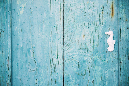 Sea Horse「Greek, Cyclades, blue wooden door with a white seahorse」:スマホ壁紙(13)